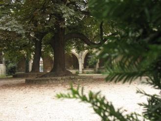 París. Parque Notre Dame I