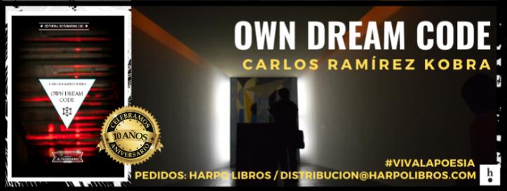 2020 - Cabecera - 10 años - Own Dream Code 00