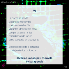 2020 - #VivaLaPoesia- 03 Maria Guadalupe Ocho Ávila